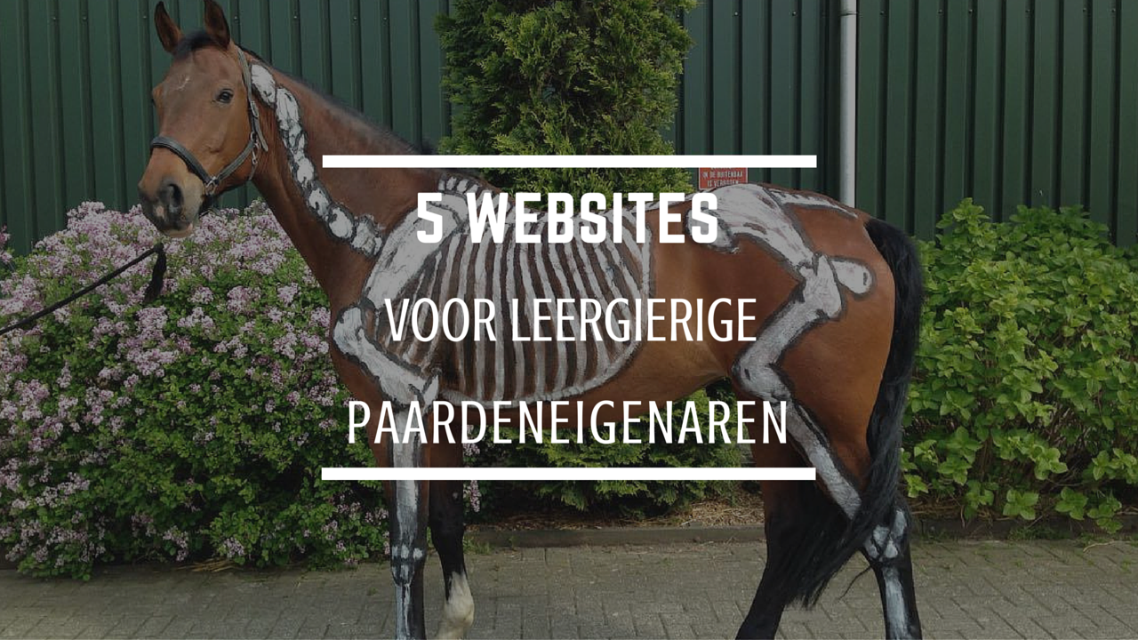 leestip websites paard gezondheid welzijn training