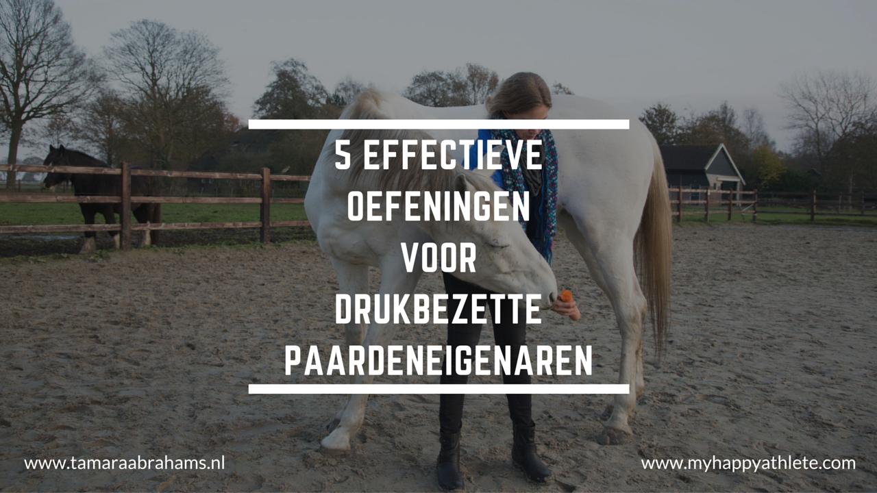 training tip paard oefeningen timemanagement