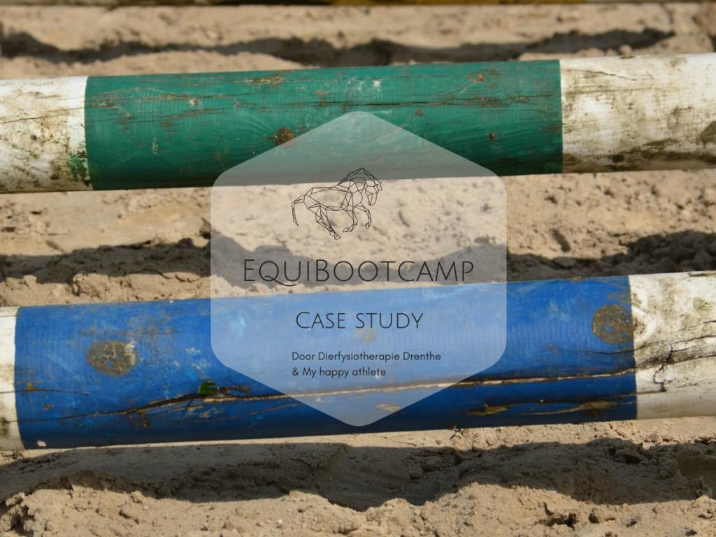 EquiBootcamp case study